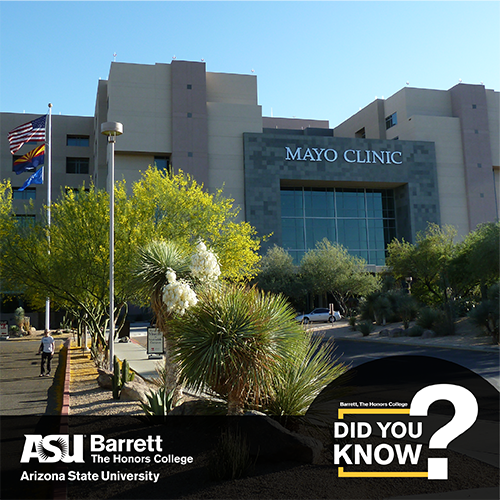 Image of the Mayo Clinic in AZ