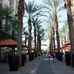 Image of the shops at Vista. There is an outside area with lights, palm trees and tables with umbrellas